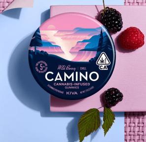 Camino Wild Berry Gummies 10MG