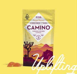 Camino Pineapple Habanero Gummies 100MG THC