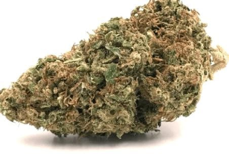 (PRE-ORDER ONLY) Cherry Punch (24% THC) Fog City Farms