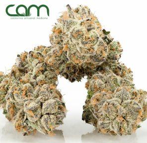 B. Cam 3.5g Flower - Quality 10/10 - High C (~22% THC)