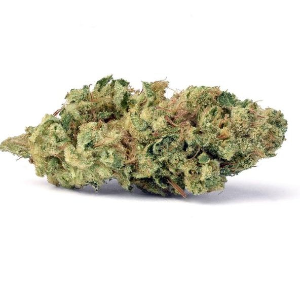(PRE-ORDER ONLY) Rollins (23.40% THC) FloraCal