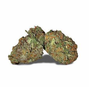 Blue Cheese - 14 grams