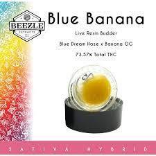 BEEZLE - 1G SAUCE - BLUE BANANA