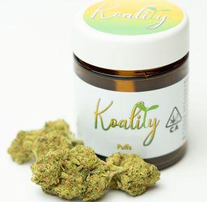B. Koality 3.5g Flower - Quality 9/10 - Black Jack (~23% THC)