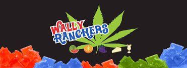 *Wally Ranchers 100mg Lozenge Drops - Grape