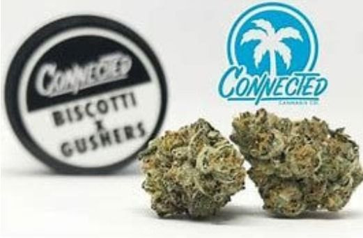 Connected Biscotti X Gushers Indoor 3.5g (unit)