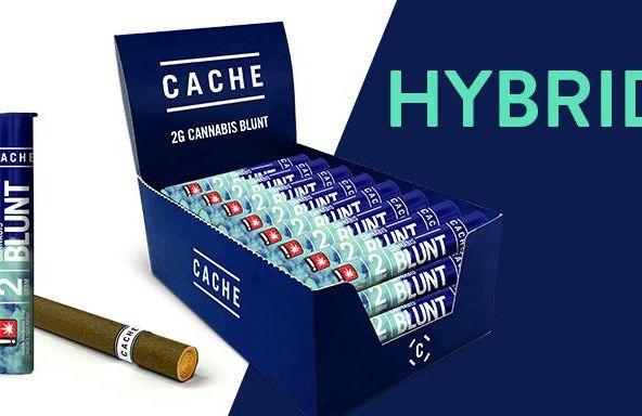 Cache - Hybrid - Blunt - 2g