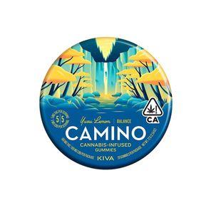 Camino Tin Yuzu Lemon 1:1 / CBD:THC