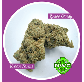 2338 - Space Candy Buds By: Urban Farms