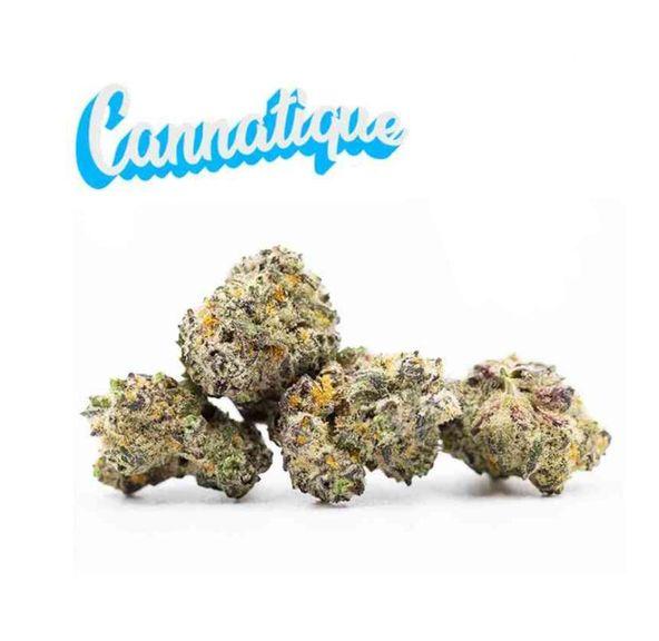B. Cannatique 3.5g Flower - 10/10 - Blueberry Cruffin (~33% THC)