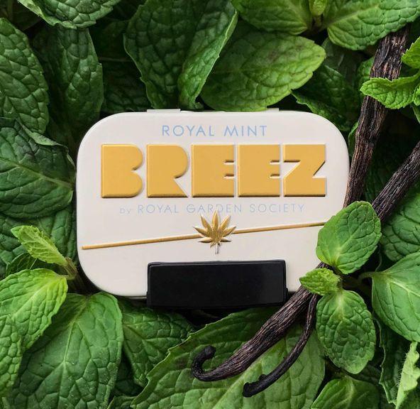 Breez Royal Mint Tin - 100mg