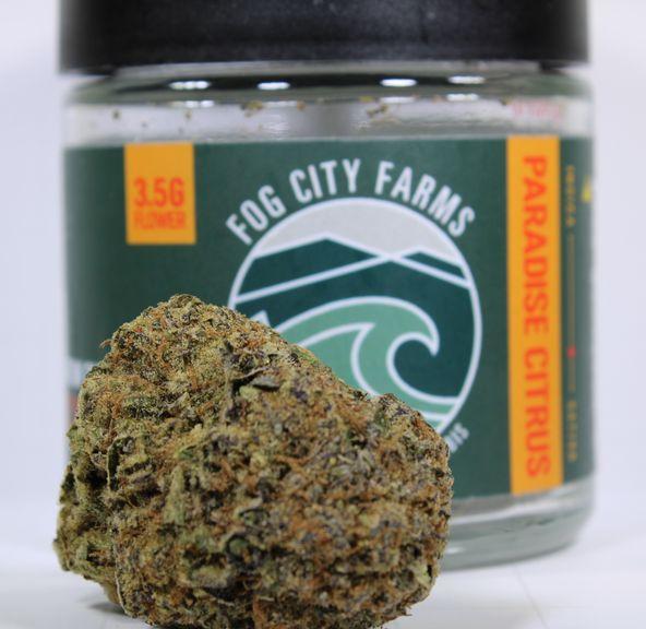 (PRE-ORDER ONLY) Paradise Citrus (25.13% THC) Fog City Farms