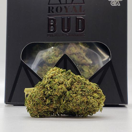 1/8 Lemon Tree (23%/Hybrid) - Royal Bud