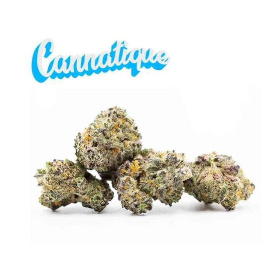 B. Cannatique 3.5g Flower - 9.5/10 - Cream (~26% THC)
