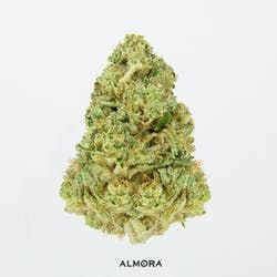 Almora Farm - Hindu Kush - 28g