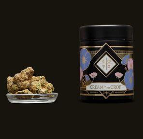 B. Cream of the Crop 3.5g Flower - 9/10 - Purple Thunder (~29% THC)